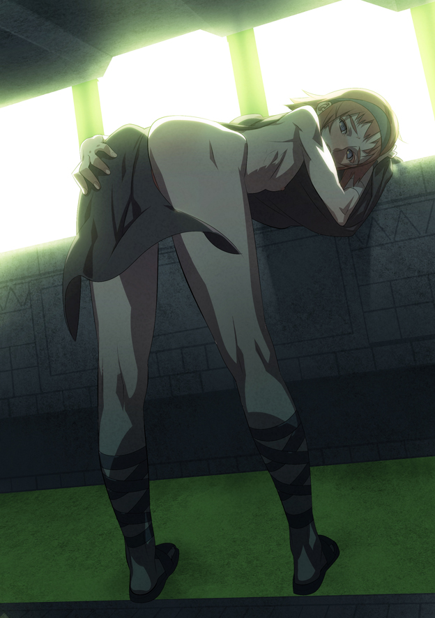 shadow colossus of the malus Levi attack on titan height