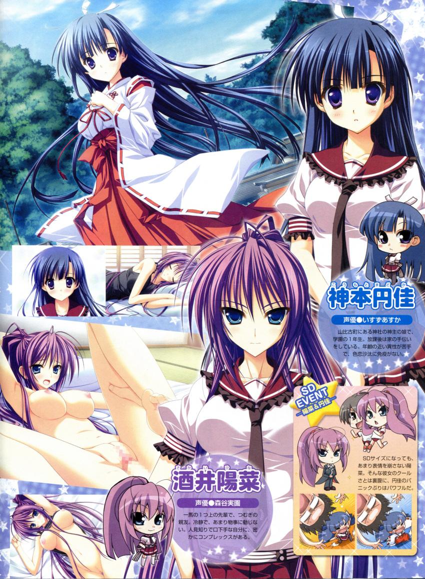 hashi kakaru e uncensored hoshizora Legend of zelda romani hentai